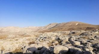 Land for Sale Tannourine – Faouqa ( Laqlouq ) Batroun Area 812Sqm