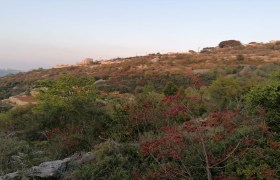 Land for Sale Aalali Batroun Area 1783Sqm
