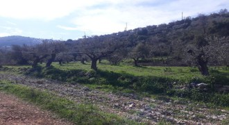 Land for Sale Ain Kfaa Jbeil Area 1294Sqm