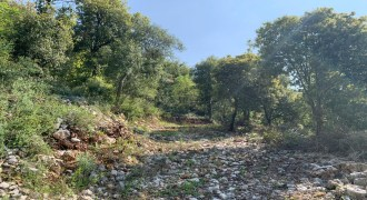 Land for Sale Chabtine Batroun Area 2630Sqm
