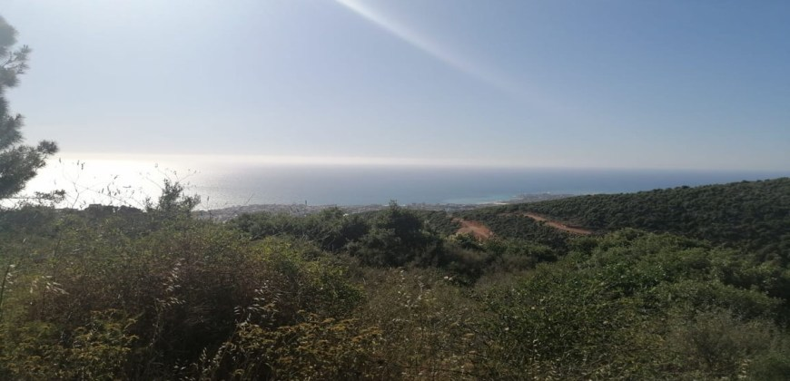 Land for Sale Ijdabra Batroun Area 2560Sqm