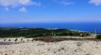 Land for Sale Chmout Jbeil Area 12100Sqm