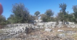 Land for Sale Chabtine Batroun Area 12500Sqm