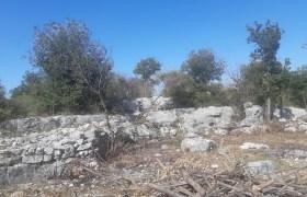 Land for Sale Chabtine Batroun Area 12500Sqm