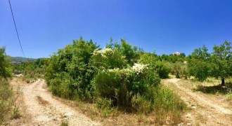 Land for Sale Chabtine Batroun Area 1004Sqm