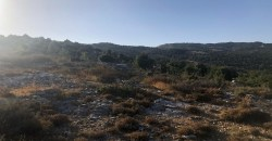 Land for Sale Mechmech Jbeil Area 1850Sqm