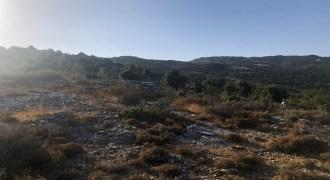 Land for Sale Mechmech Jbeil Area 1850Sqm
