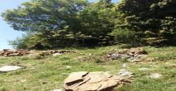 Land for Sale Jaj Jbeil Area 900Sqm