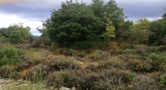 Land for Sale Lehfed Jbeil Area 5900Sqm