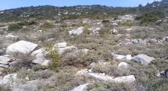 Land for Sale Tourzaiyya Jbeil Area 1635Sqm