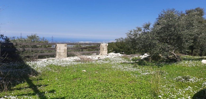 Old House for Sale Mahmerch Batroun Housing Area 100Sqm and Land Area 1290Sqm