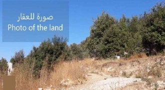 Land for Sale Lehfed Jbeil Area 1093Sqm