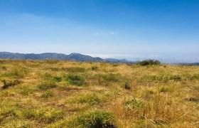 Land for Sale Tannourine – Faouqa – ( Msateb -Ain Et Tillaje ) Batroun Area 2000Sqm