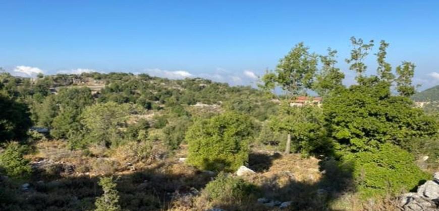 Land for Sale Mechmech Jbeil Area 1315Sqm