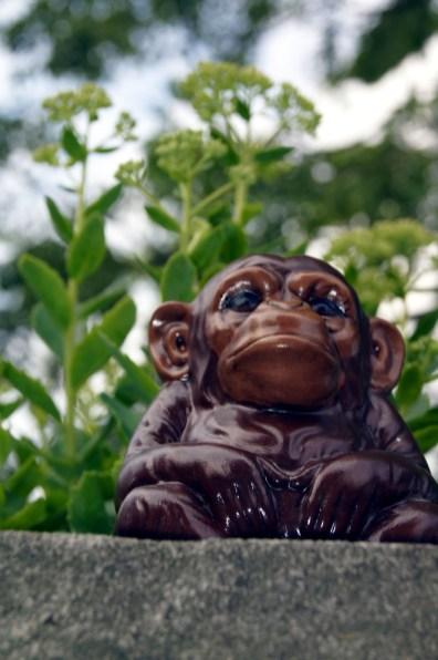 Lord Monkey