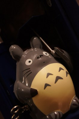 Totoro and TARDIS