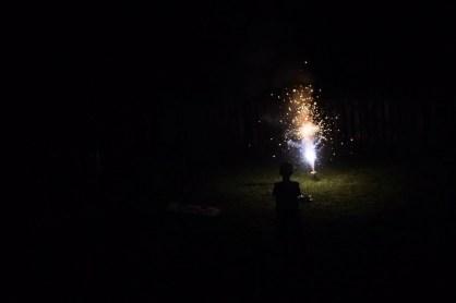 Firework silhouette
