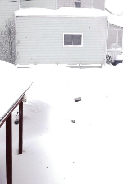 Blizzard 45