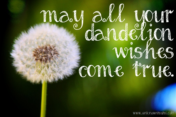 may_all_your_dandelion_wishes_come_true-unknownmami