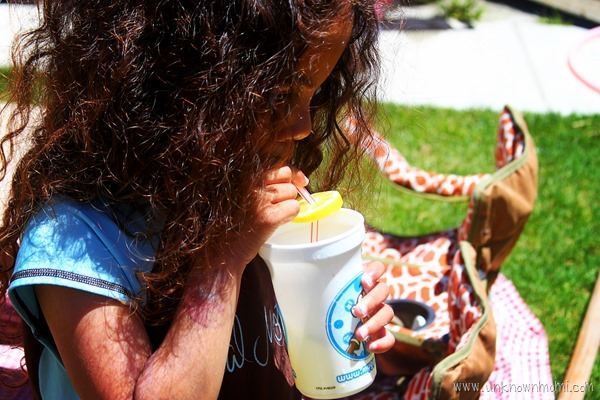 Fresh_squeezed_lemonade-unknownmami