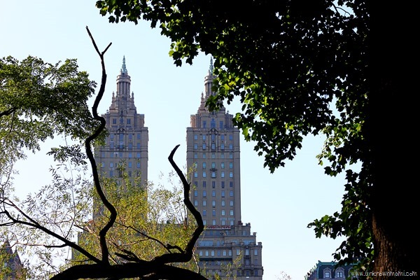 As seen from Central Park in NYC