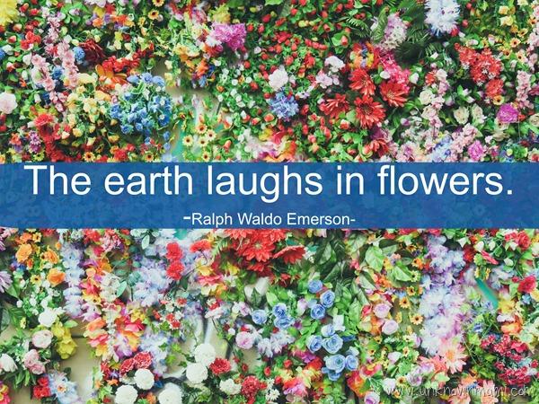 Ralph Waldo Emerson Earth Quote