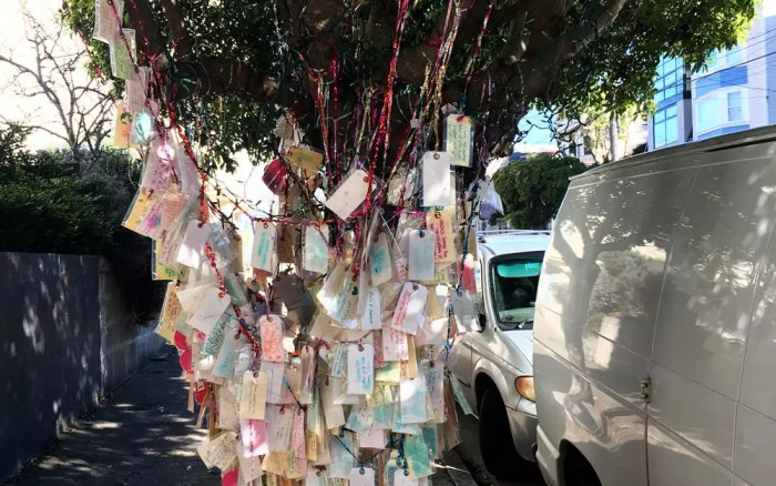 The Wishing Tree in San Francisco (Sundays In My City)