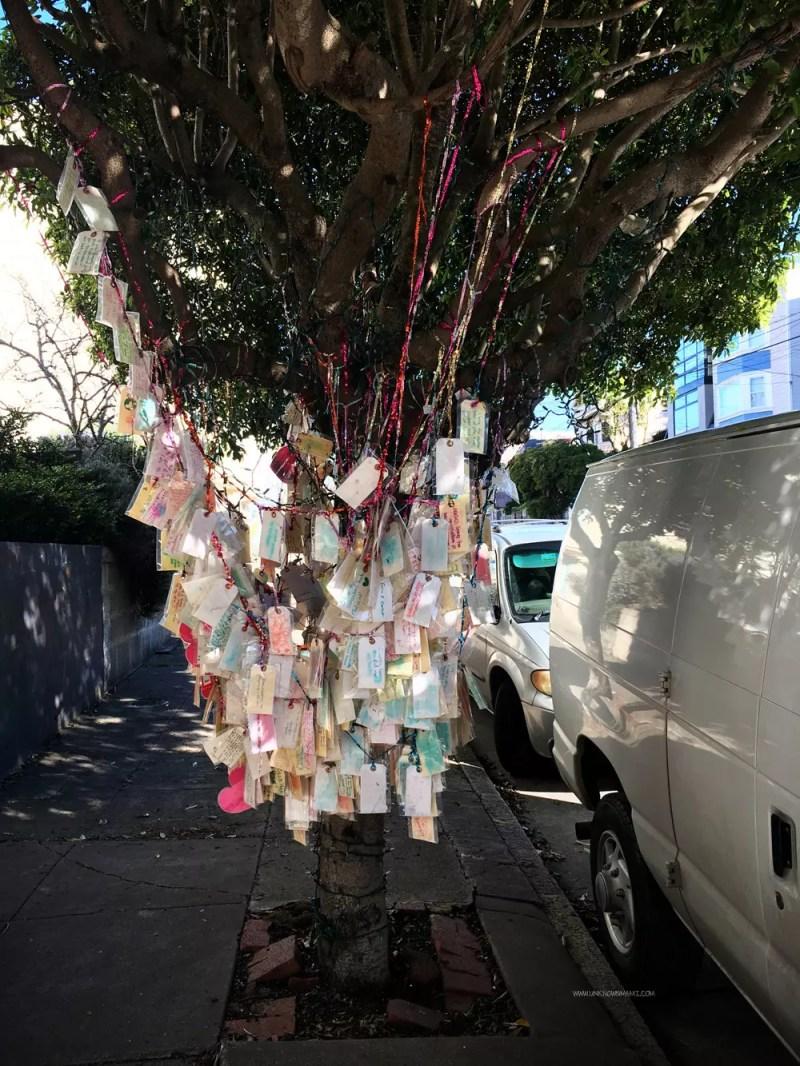 San Francisco Wishing Tree
