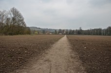 A public right of way straight through a field.