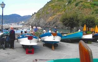 Vernazza Port