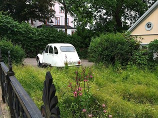 A lush, green overgrown front yard with wild flowers and a small white vintage European car parked in its drive in Djurgarden, Stockholm, Sweden. By C.S. White