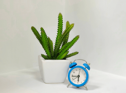 a picture of a timer because home management tips save you time.