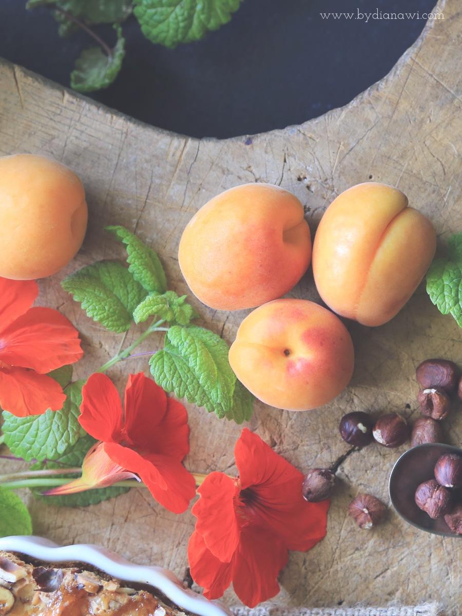 abrikoser logo