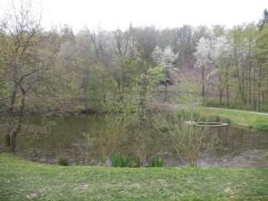 Zátišský rybník se nachází v těsné blízkosti významných vil a kdysi i zahradních restaurací.