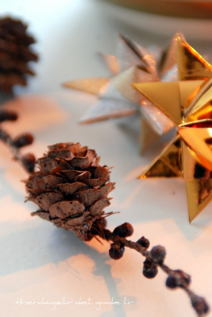 Christmas star - diy