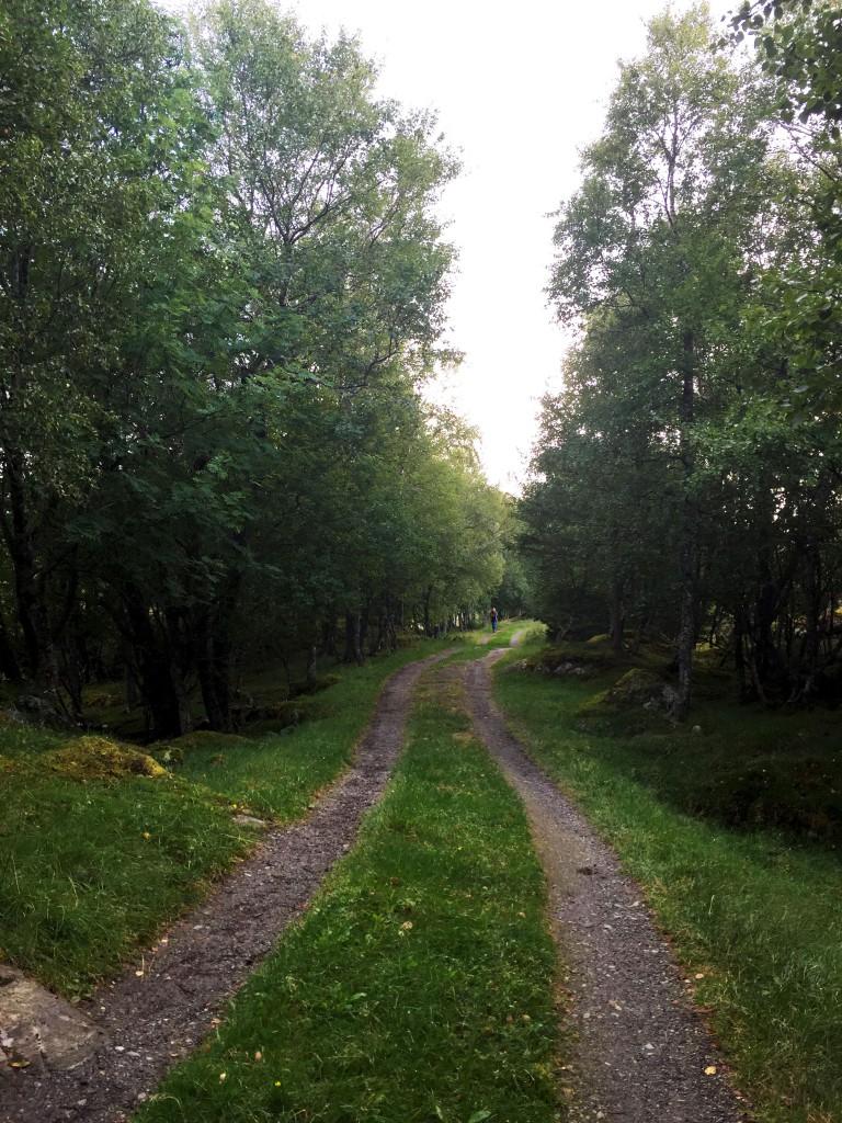 Nature - Norway