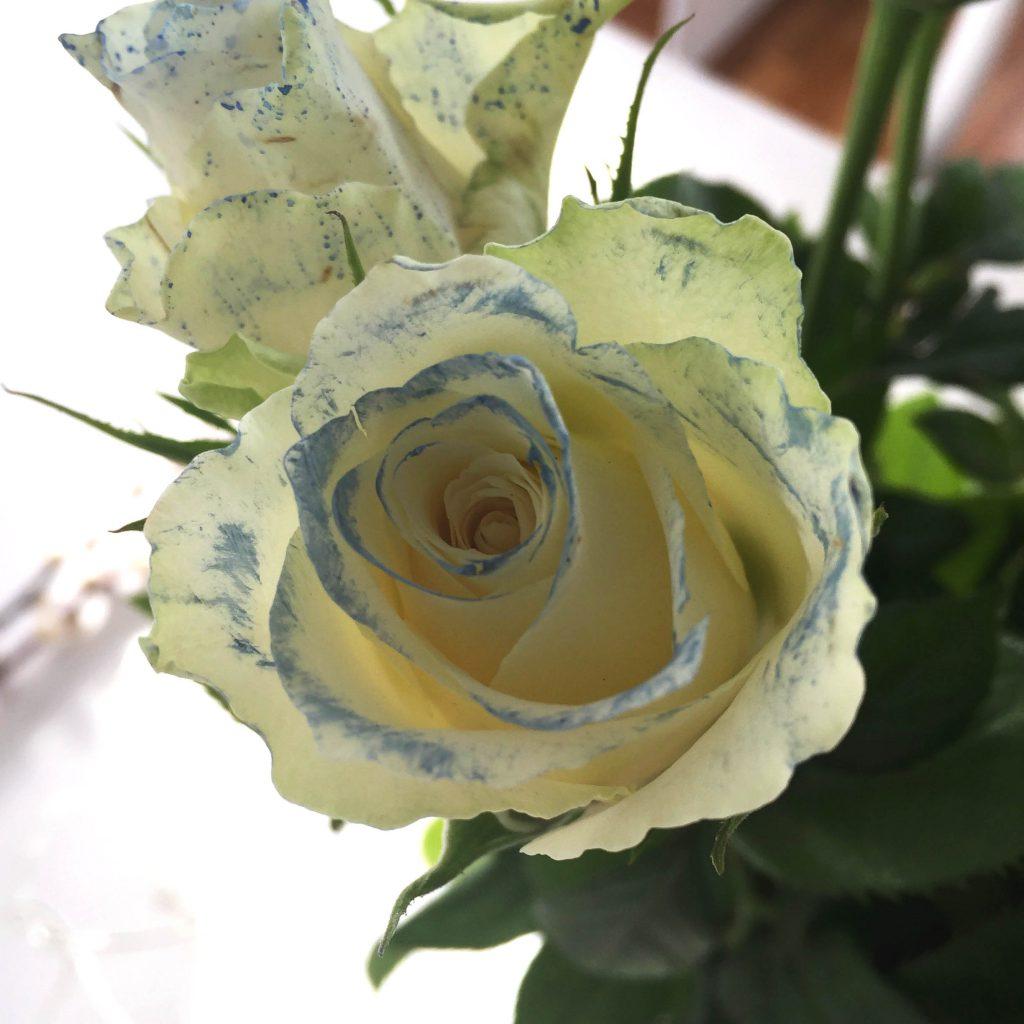 Mal roser med vannmaling- bye9design.com