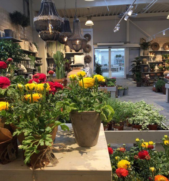 Hageland Levanger - en oase til å bli glad i