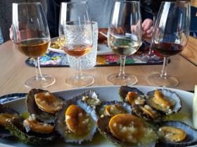 Cella bar - Pico - Açores - Lapas