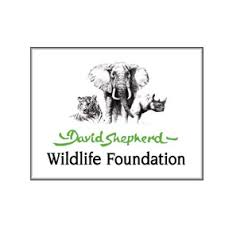 zambezi meaco dehumidifier david sheperd wildlife foundation elephant donation