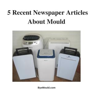 articles mould newspaper magazine ireland uk dehumidifier
