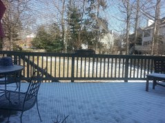 But my Uncle's backyard looked a lok more wintery!