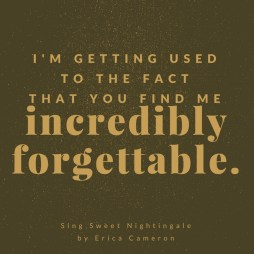 ssn-forgettable