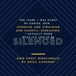 ssn-silenced