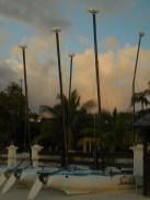 Antigua 2014 317