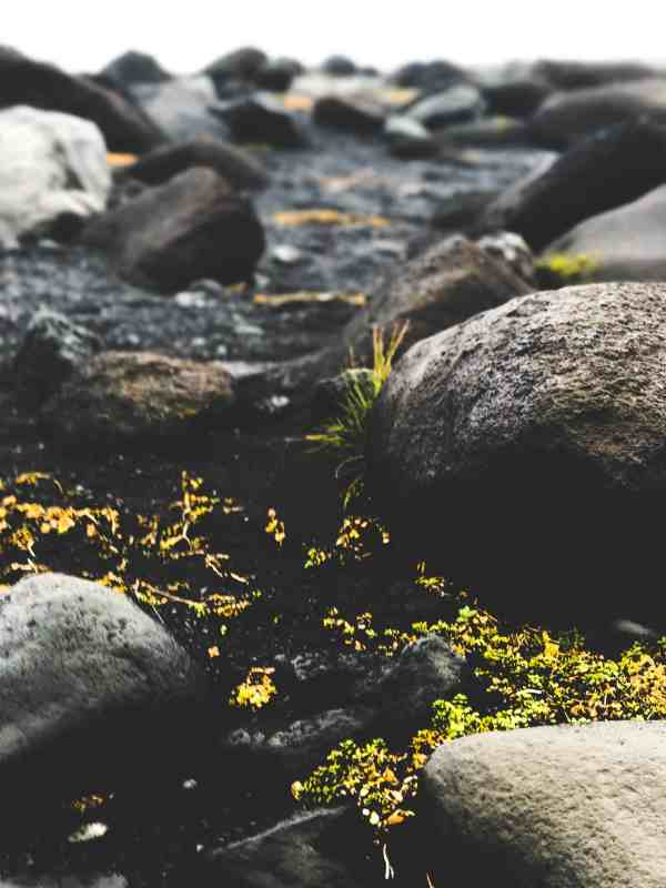 Reyn Photography Collection: Iceland