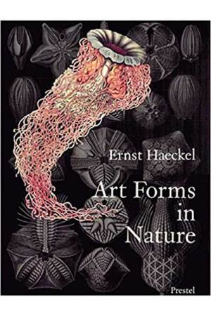 ernst haeckel book