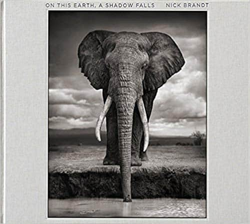 Book: Nick Brandt: On This Earth, A Shadow Falls