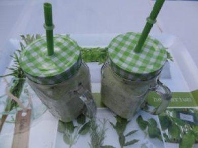 velouté froid de concombre 2