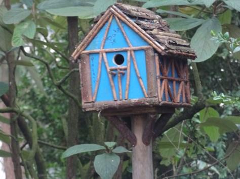 cage oiseaux  coulommiers parc des capucins